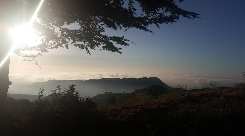 Lebanon Hadath Reserve - Liban Reserve de Hadath el Jebbe